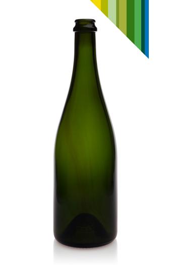 Champagne mod. 75